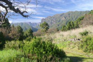 La Palma Travel Guide